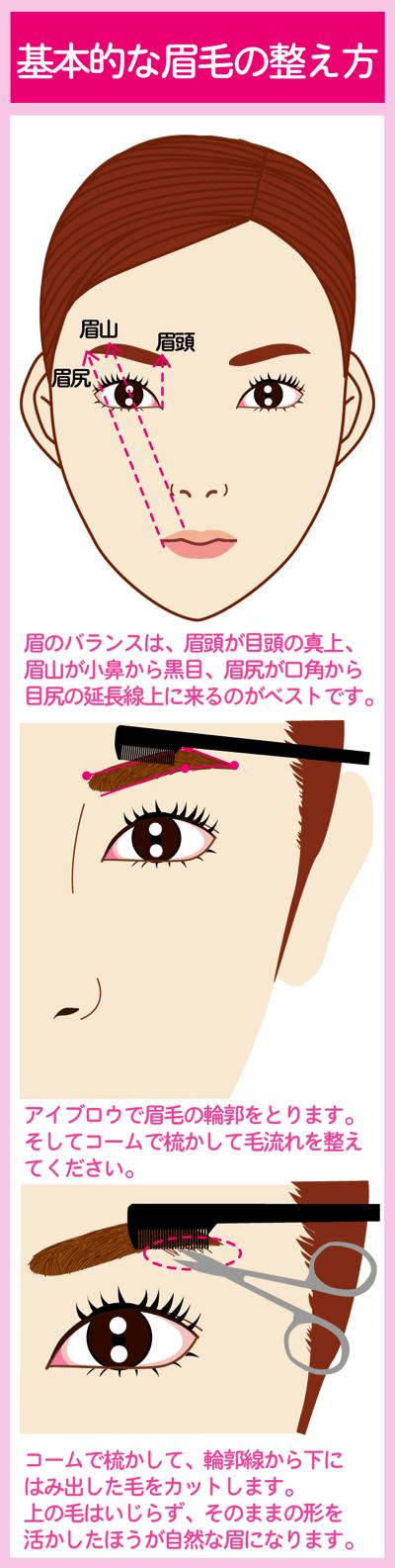 基本的な眉毛の整え方